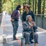 Why-Become-a-Certified-Nursing-Assistant-Make-a-Difference-Wheelchair