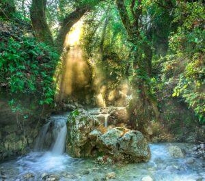 In-God's-Hands-Flowing-Stream