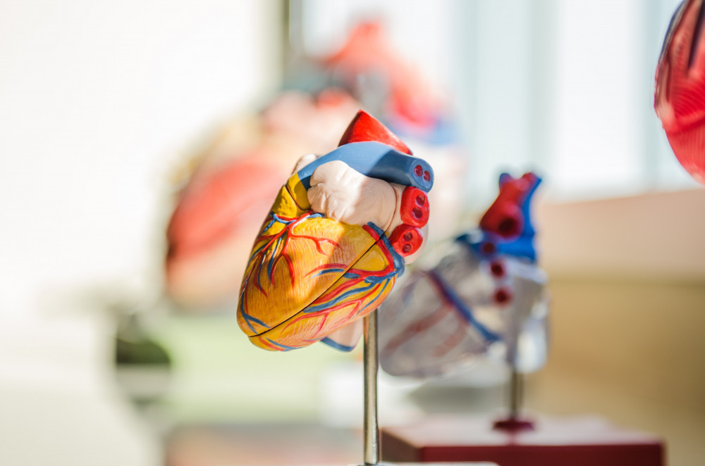 What-Is-an-Underlying-Medical-Condition-COVID-19-Alert-Heart