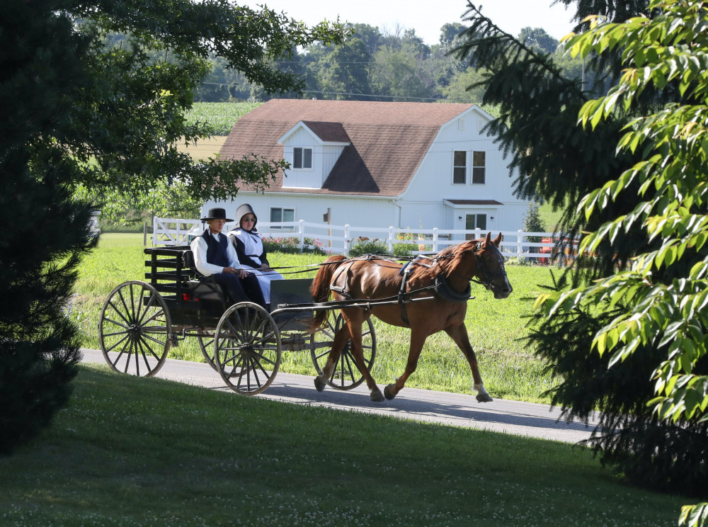 Avon-Reviews-Changes-135-Years-Still-Going-Strong-Horse-Buggy